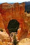 Wild Wild West 2010 Bryce Canyon XII