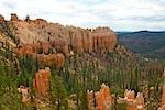 Wild Wild West 2010 Bryce Canyon XIV