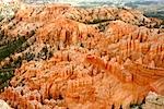 Wild Wild West 2010 Bryce Canyon XVIII