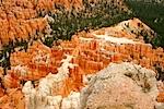 Wild Wild West 2010 Bryce Canyon XXII